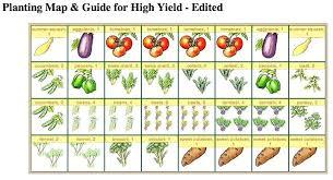 vegetable garden layout planning raised bed vegetable garden layout attractive raised