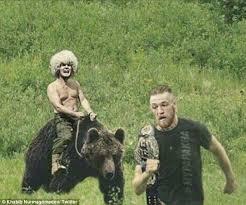 Running Bear Meme - conor mcgregor strikes back at khabib nurmagomedov taunt daily