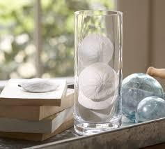 Sand Vase Faux Sand Dollar Vase Filler Pottery Barn