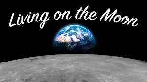 how much is it to go to the zoo lights how much would it cost to live on the moon youtube