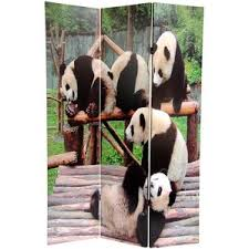 Arthouse Room Divider Animal Room Dividers You U0027ll Love Wayfair