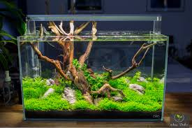 Led Beleuchtung Wohnzimmer Forum Diy Led Lampe Selber Bauen Aquariumbeleuchtung Aquascaping Forum
