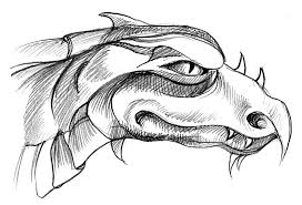 dragon drawing pictures coloring pages wallpaper