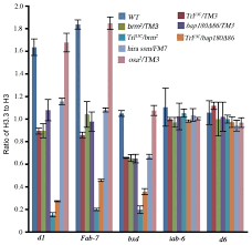 Flag Complex The Pbap Remodeling Complex Is Required For Histone H3 3
