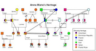 9 best images of sample genogram template genogram examples