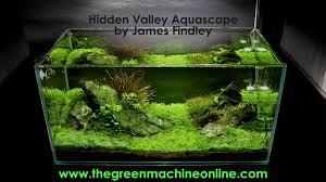 Aquascapes Com Hidden Valley Aquascape The Green Machine Youtube