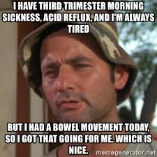 Morning Sickness Meme - i have third trimester morning sickness acid reflux and i m
