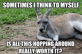 Kangaroo Meme - untitled 29 most funniest kangaroo memes images graphics