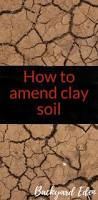 the 25 best clay soil ideas on pinterest planting in clay top