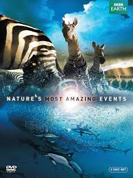 bbc home design videos nature u0027s most amazing events amazon ca various dvd