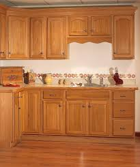 Oak Cabinets Kitchen Design Golden Oak Kitchen Cabinet Kitchen Design Photos Books Worth