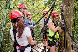 Treetop Canopy Tours by Blog Tree Frog Canopy Tours