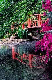 Botanical Gardens In Birmingham Al Bridge In The Japanese Gardens Section Of The Birmingham Botanical
