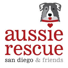 australian shepherd san diego aussie rescue sd logo main jpg