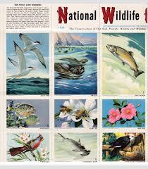 u s national wildlife federation sheet of 36 colorful wildlife