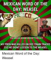 Weasel Meme - mexican word of the day weasel fbmexican wordoftiheday my fren was
