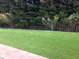 Fake Grass For Backyard by Artificial Turf Cost Highgrove California Landscaping