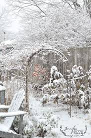 219 best images about winter garden on pinterest gardens autumn