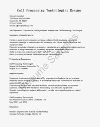 cheap critical essay writing website uk phd thesis dissertation