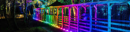 enchanted forest of light tickets enchanted forest