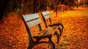 fall desktop pic fall orange autumn leaves park with benches desktop backgrounds hd