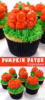 halloween cupcake cakes ideas 35 best cat in the hat cupcakes images on pinterest birthday