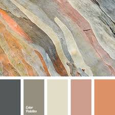 Interior Color by Best 25 Beige Color Palette Ideas On Pinterest Neutral Color