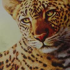 5pcs combination canvas print painting leopard modern wall art