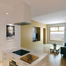 open kitchen to living room for small apartments room image and