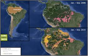 Amazon World Map by Increased Deforestation In The Amazon Could Mean Far Less Rainfall