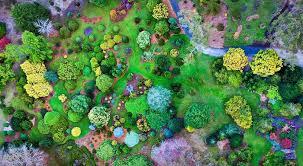 Mt Lofty Botanic Gardens Mount Lofty Botanic Garden Glam Adelaide