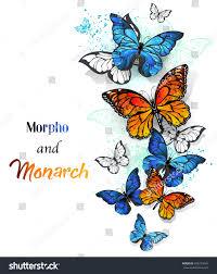 flying bright blue butterfly morpho orange stock vector 605273645