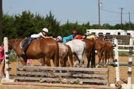 Black Mustang Ranch Pilot Point Texas Horse Camps For Kids Teens In Pilot Point Tx Equine Summer Day