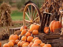 download thanksgiving wallpaper thanksgiving pumpkin background bootsforcheaper com