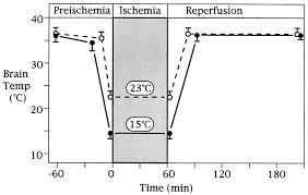 deep hypothermia diminishes the ischemic induction of heat shock