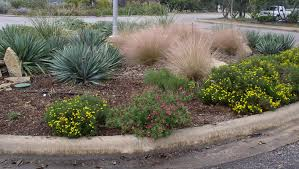 texas landscaping ideas texas landscape plants best 25 landscaping ideas on pinterest