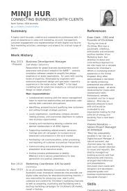 Cv And Resume Samples by Business Development Resume Samples Visualcv Resume Samples Database