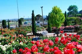 Botanical Gardens El Paso 5437374 Orig Jpg