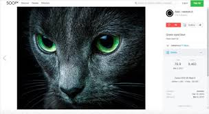 500px Beware 500px Now Sells Your Photos On Fotolia Without Credit