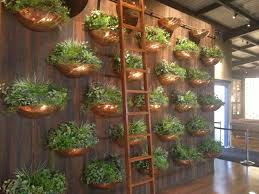 brass herb pot wall edible garden pinterest edible garden