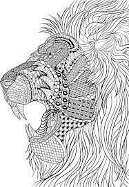lion coloring pages adults free printable 66376