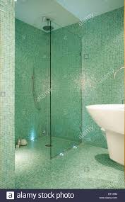glass screen on walk in wet room shower in modern green mosaic