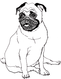 cute pug puppy dog coloring pages womanmate com