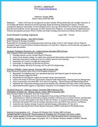 Sample Resume For Business by Resumes External Auditor Daily Resume Cost Engineer