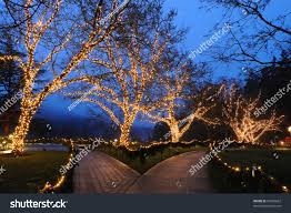 beautiful garden night scene christmas butchart stock photo