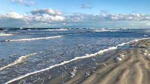 beach vacation florida rental condo new smyrna ocean pet friendly