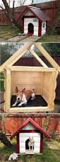 Petsmart Igloo Dog House How To Build Insulated Dog House Intended For Dream Dog House Ideas