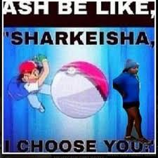 Sharkeisha Meme - ash be like sharkeisha i choose you