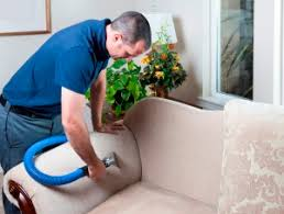 upholstery and furniture cleaning mexico and ashland mo upholstery