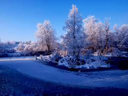 68 entries in winter nature scenes wallpapers group